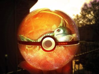 The Pokeball of Mudkip by wazzy88