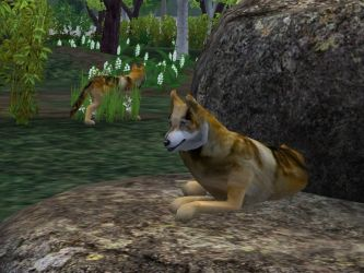 ZT2 Showcase - Mexican Wolf by ProfDanB
