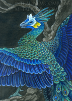 Peadragon ACEO by thedancingemu
