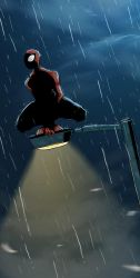 Spiderman at night by cury
