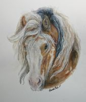 Tricolor Gypsy Vanner in hard watercolors by QueenAnneka