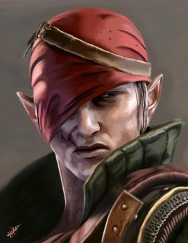 The Witcher 2 - Iorveth by JuliaSartKnight