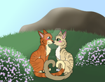 FireStar X SandStorm. by RaveGalaxy