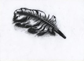 Charcoal Feather by k4m1looo