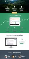 SEO/SEM Agency website by jcd-pl