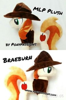 MLP Braeburn/Removable Accessories by Ponypassions by ponypassions