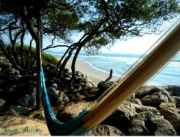 From my Hammock by shakti-anishka