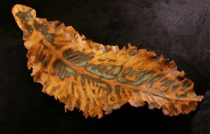 Large leaf by Frost-indri