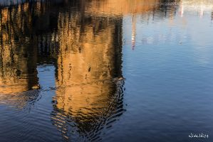 Water, ducks and reflection ... by wiwaldi24