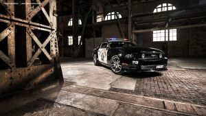 CHP Mustang III by AmericanMuscle