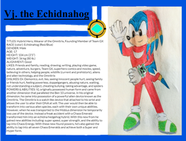 Vj The Echidnahog Original Character Profile by VjTheEchidnahog