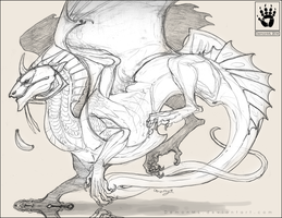 Calsem Dragon by DemonML