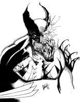 Wolverine/Venom mashup, inks by Shawn-Langley