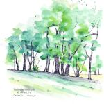 Sketchbook - A row of trees by dasidaria-art