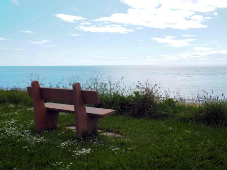 Bench With a View by Enlothien