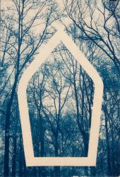 Cathedral Cyanotype by mouse2cat