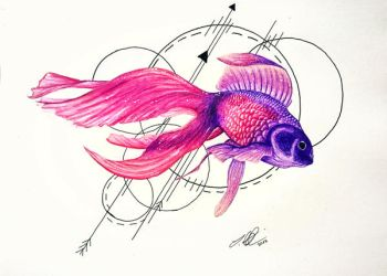 Abstract Koi by Schoerie