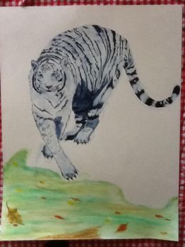 White tiger 5 by megumi16