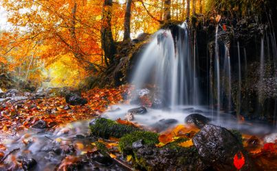 The Little Fall by borda