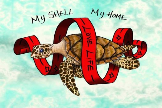 My Shell, My Home by The-Dreaming-Dragon
