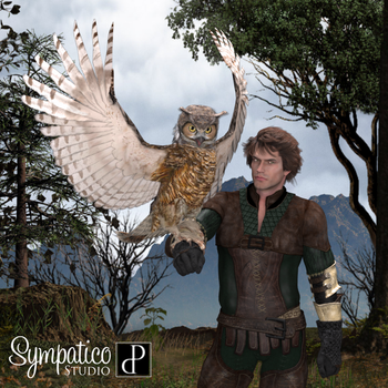 Songbird ReMix Owls by Ken Gilliland by Estroyer