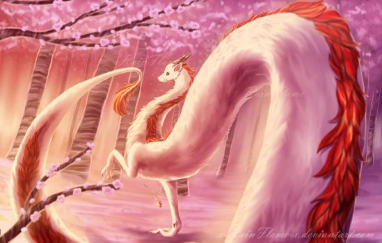 Cherry Blossoms by x-RainFlame-x