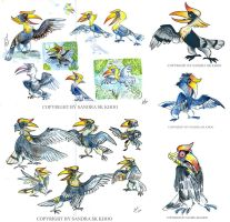 Hornbill Sketches by Sandora