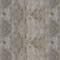 Pattern (Fur Tutorial)(Asset) by aanderr