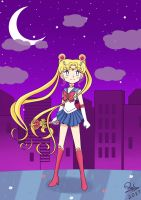 Pretty Guardian Sailor Moon by RaiCheezz