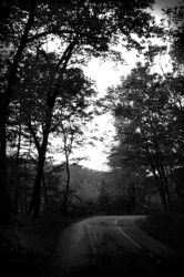 Road by Tree-Girl