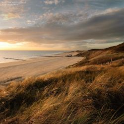 Dunes in November Light by Svision