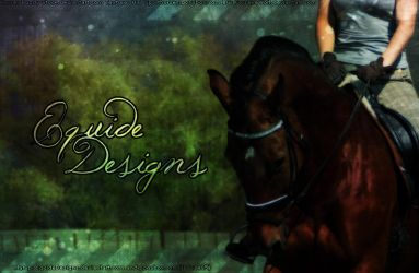 Bay Horse Picture Premade by EquideDesigns