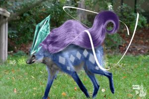 Real Suicune