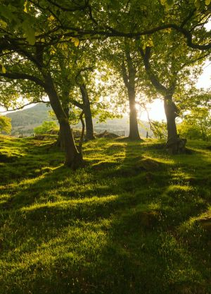 Patterdale by scotto