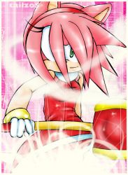 ::: Amy Rose by LilDude