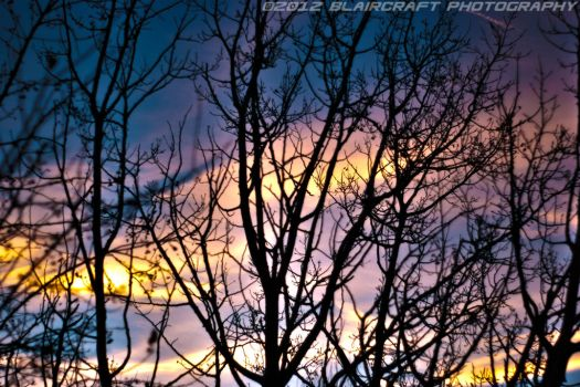Sunset through the trees by RobieBlair