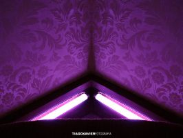 PURPLE CORNER by tiago-xavier