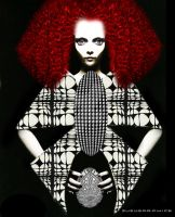 Red Hair and Lace Vasarely by zuzugraphics