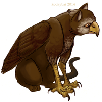 Hawk Gryphon by kookybat
