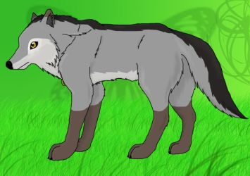 Wolfeh on teh green plains by WolfEclipse