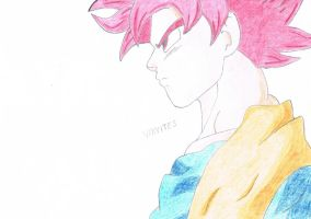 Super Saiyan God ! by Vanites