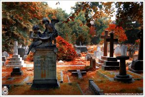 Autumn Morgue 2 by lucypop