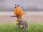 Hoopoe by Exifia