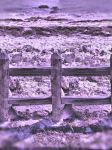 Beach Fence by OneClownShoe