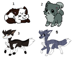 Remaining Adopts! Cheap! 0/4 (Closed!) by VinnVii