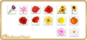 ImagePack 08 - Flowers by Lady-Himiko