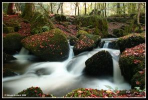 Autumn Flow by Kernow-Photography