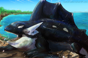 Orca Dragon by phantos