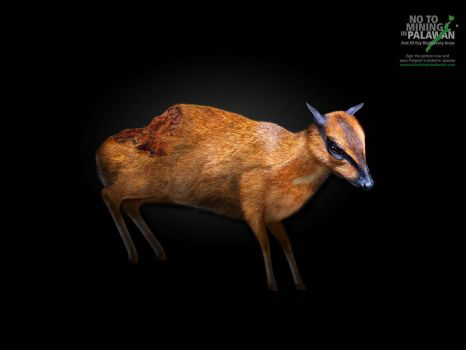 No2MiningInPalawan:Wounds Campaign:Mousedeer by akocpinoy