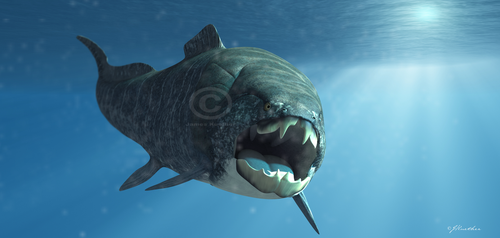 Dunkleosteus by PaleoGuy
